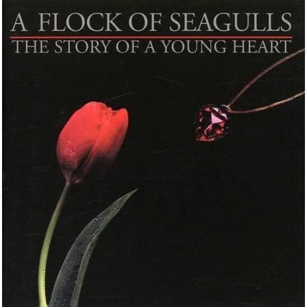 Heidi Ewing A Flock of Seagulls